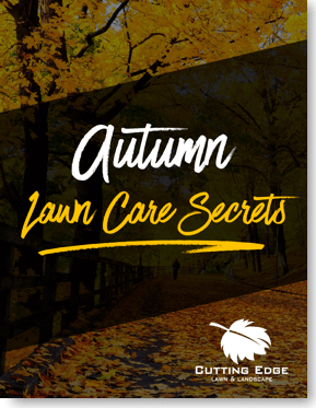 autumn lawn care secrets