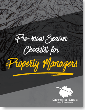 snow removal checklist property management