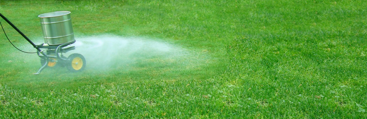 The Top 5 Best Lawn Fertilizers